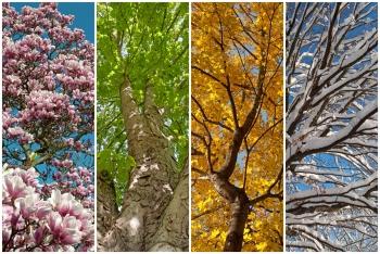 Médecine esthétique : respectons les saisons !